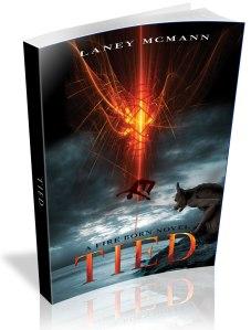 TIED-bent-paperback