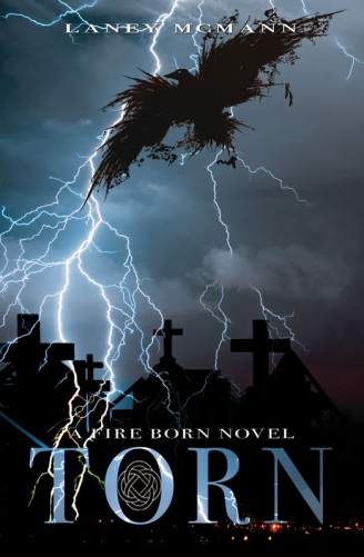 TORN (Book #2)