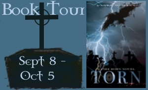 It's almost time for the Torn Blog Tour