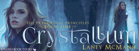 CrystallumBlitzBanner